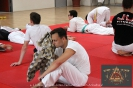 Ju-Jutsu Akademie 2014
